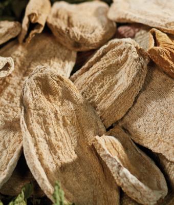 Barhoum Food: Kürbis (getrocknet)