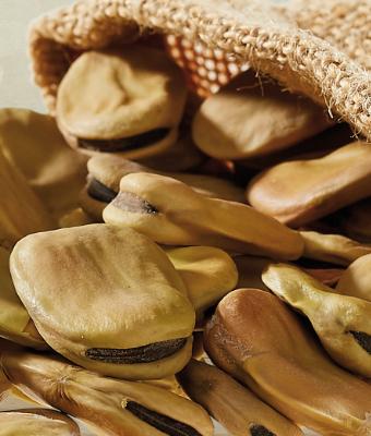 Barhoum Food: Saubohnen
